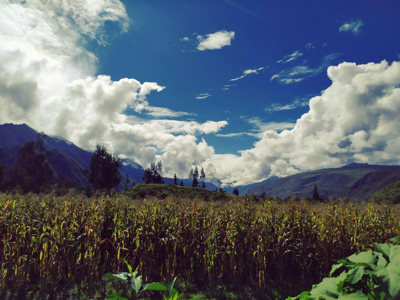Inspired Living: A connection with Peru